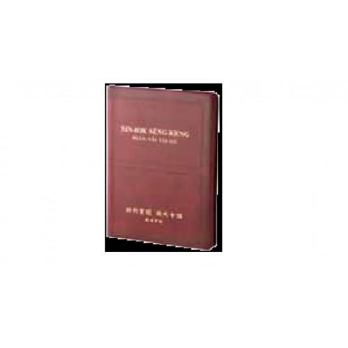 聖經 現代台語羅馬字/新約.皮面.金邊
