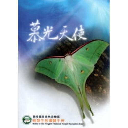 慕光天使:籐枝國家森林遊樂區蛾類生態導覽手冊