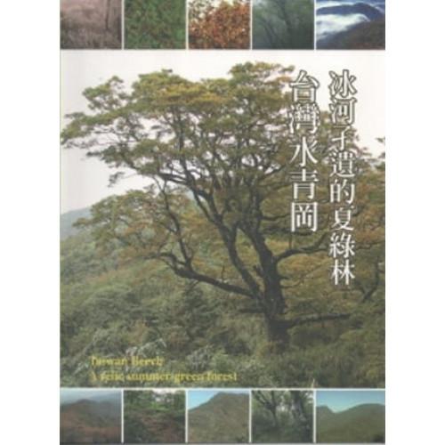 冰河孑遺的夏綠林:台灣水青岡