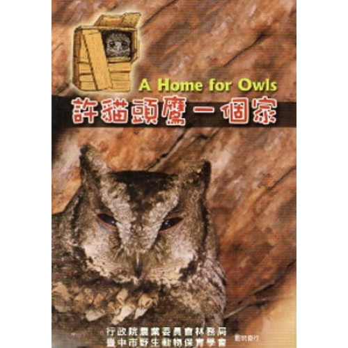 許貓頭鷹一個家 [DVD]