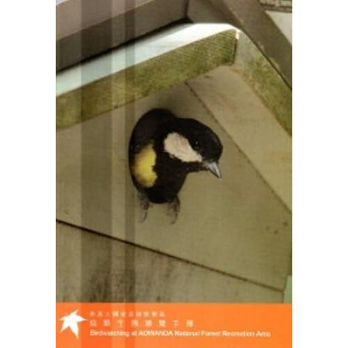 奧萬大國家森林遊樂區鳥類生態導覽手冊