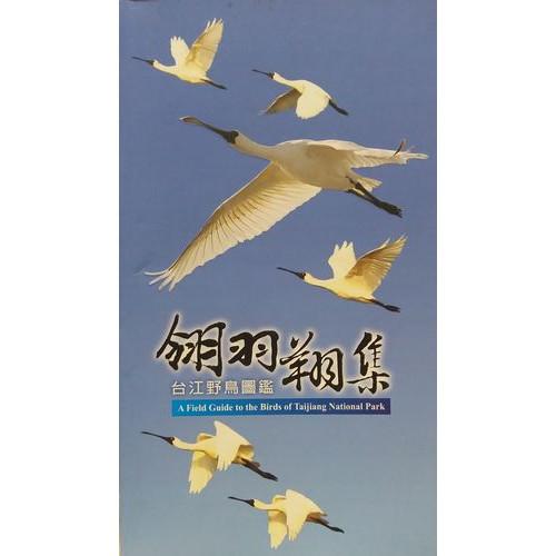 翎羽翔集-台江野鳥圖鑑