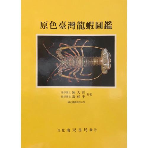 原色台灣龍蝦圖鑑