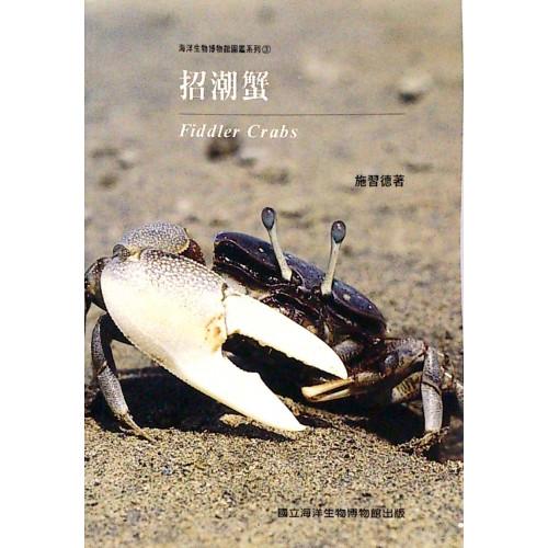 招潮蟹 (平)