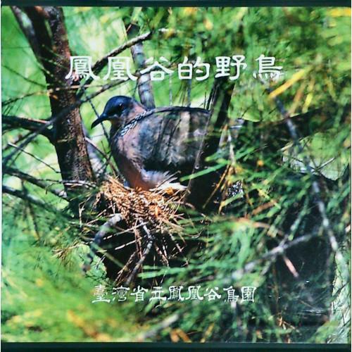 鳳凰谷的野鳥