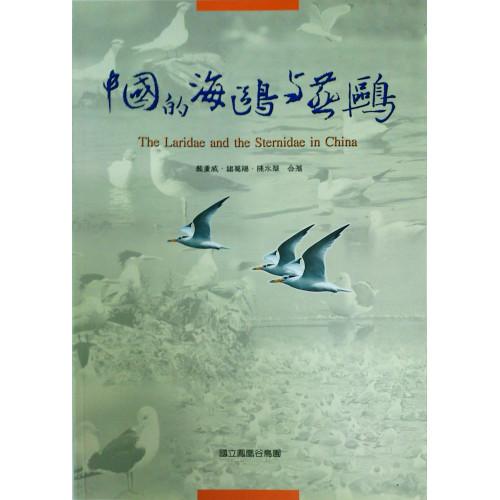 中國的海鷗與燕鷗