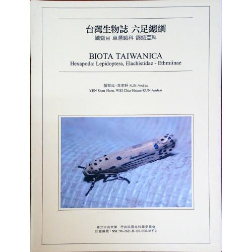台灣生物誌: 六足總綱 鱗翅目 草潛蛾科 篩蛾亞科
