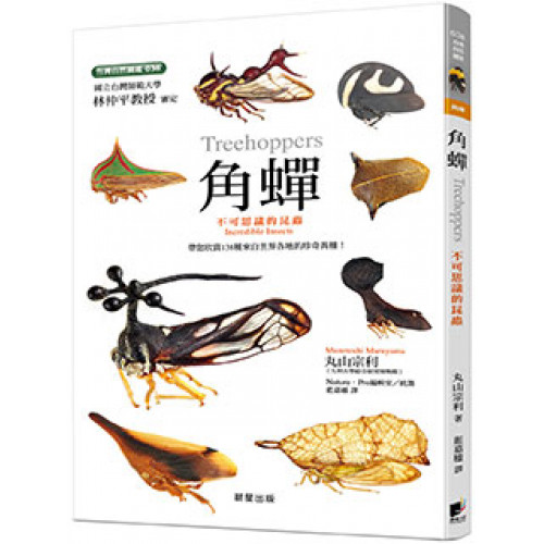 角蟬-不可思議的昆蟲